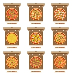 Pizzas and opened cardboard boxes vector