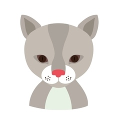 Cat animal cartoon vector