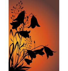 Flowers at Sunset vector image