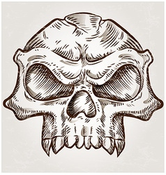 Skull sketch design vector
