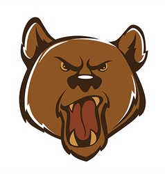 agressive bear vector image