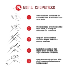 How to use chopsticks vector image vector image