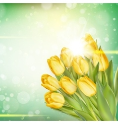 Spring Easter background EPS 10 vector image