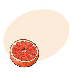 Half of ripe pink grapefruit red orange sketch vector