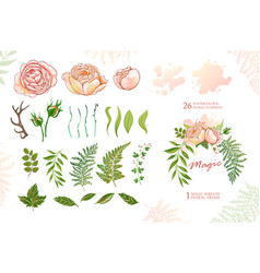 Magic wreath with roses green elements for design vector