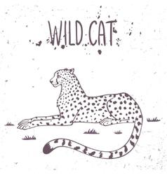 Cheetah wild cat vector