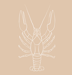 Lobster hand drawing white contour sketch on vector