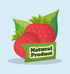 Strawberry natural product market design vector