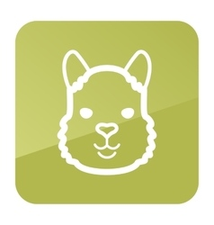 Lama icon animal head symbol vector
