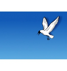 seagull on the blue vector image vector image
