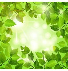 Spring frame of green leaves vector