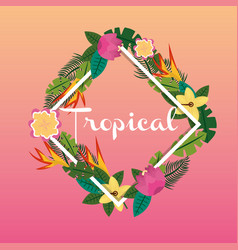 tropical flowers leaves exotic flora wild nature vector image vector image