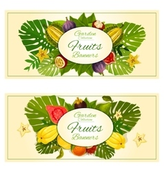 Tropical garden fruits banners vector