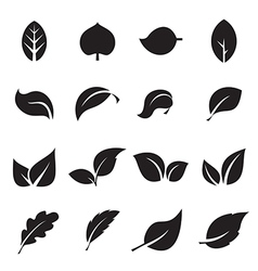 Collection of leaf icons vector image
