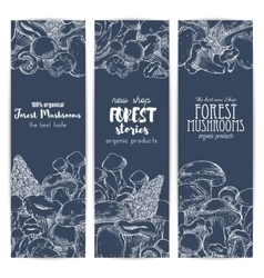 Forest mushrooms sketch banners vector