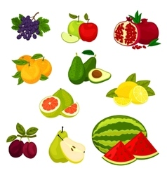 Fresh fruits isolated icons set vector image