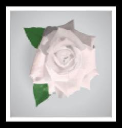 Beautiful white realistic rose vector image