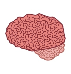 Brain silhouette color with side view vector