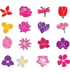 Flowers one vector