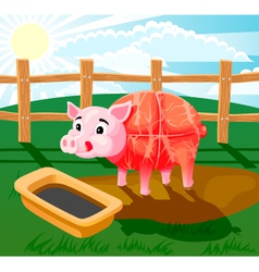 pig sausage vector image