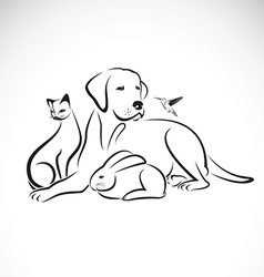 Group of pets on white background vector