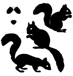 Set of squirrels silhouettes vector image
