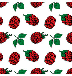 Seamless pattern with raspberries design element vector