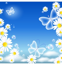 Butterflies and daisy vector