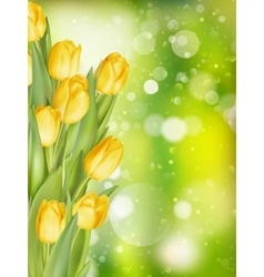 Spring background with tulips EPS 10 vector image