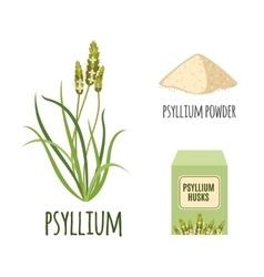 Superfood psyllium set in flat style vector