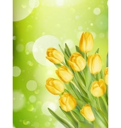 Bouquet of tulips eps 10 vector