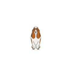 Basset hound cartoon dog icon vector