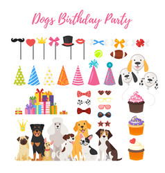 dog party and birthday elements vector image vector image