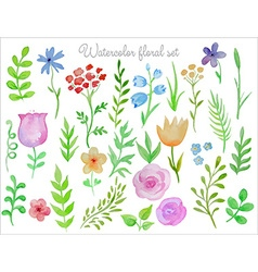 floral set Colorful floral collection with leaves vector image vector image