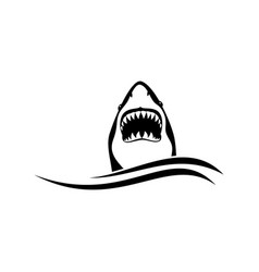 shark logo on a white background vector image vector image