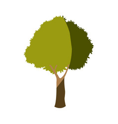 Tree plant branch leafy greenery nature vector
