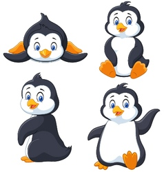 Collection of cartoon penguin isolated on white ba vector
