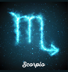 abstract zodiac sign scorpio on a vector image