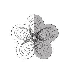 geranium flower decoration monochrome vector image vector image