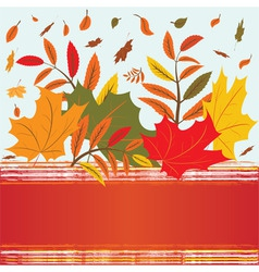 autumnal background vector image vector image