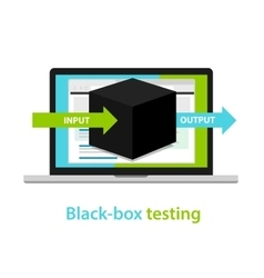 Black box testing input output process software vector