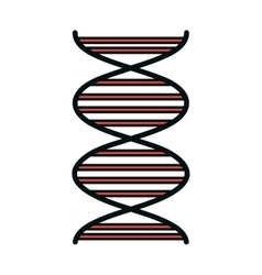 Human DNA isolated flat icon vector image
