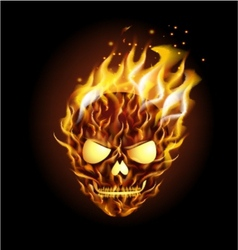 Scary skull on fire vector