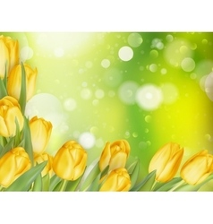 Background with tulips eps 10 vector