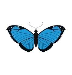 Blue butterfly icon insect design graphic vector