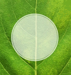 Green leaf texture with label vector