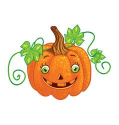 halloween character pumpkin isolated one vector image vector image