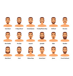man fashion beards and mustaches vector image