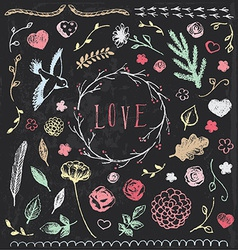 Hand Drawn Vintage Chalkboard Nature Elements Set vector image