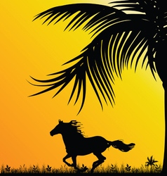 Horse in nature in colorful vector